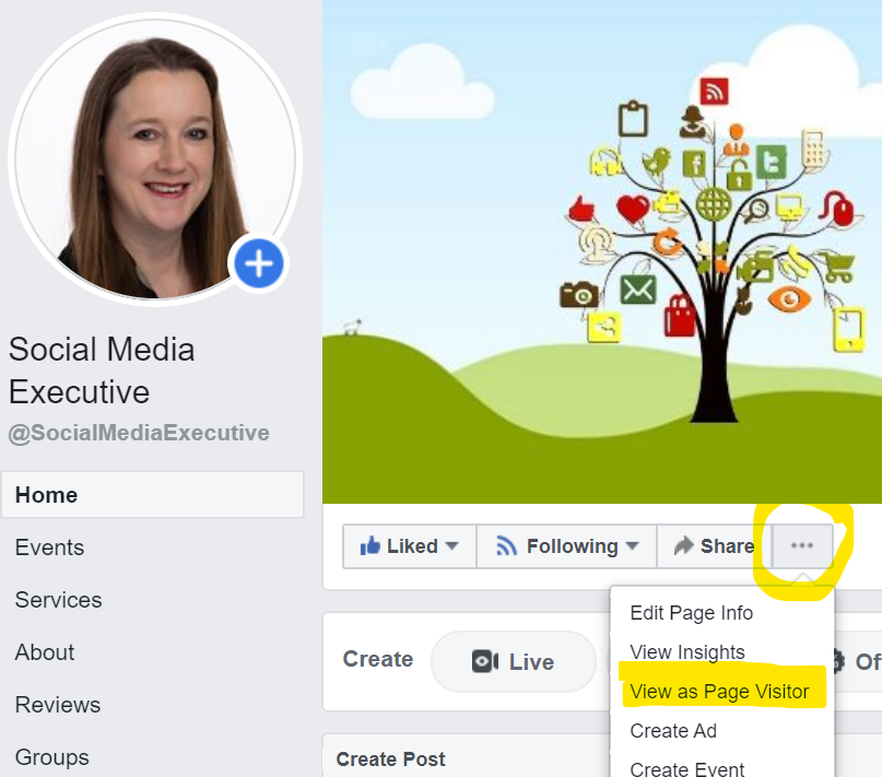 This is a screen grab of my, Becs Bate Facebook homepage by clicking the three dots you can select to see your page as a visitor. That way you can check to see how other people see your business homepage.