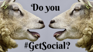 "Do you put the ""Social""​ in social media?"