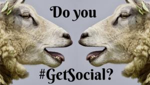 """Do you put the """"Social"""" in social media?"""